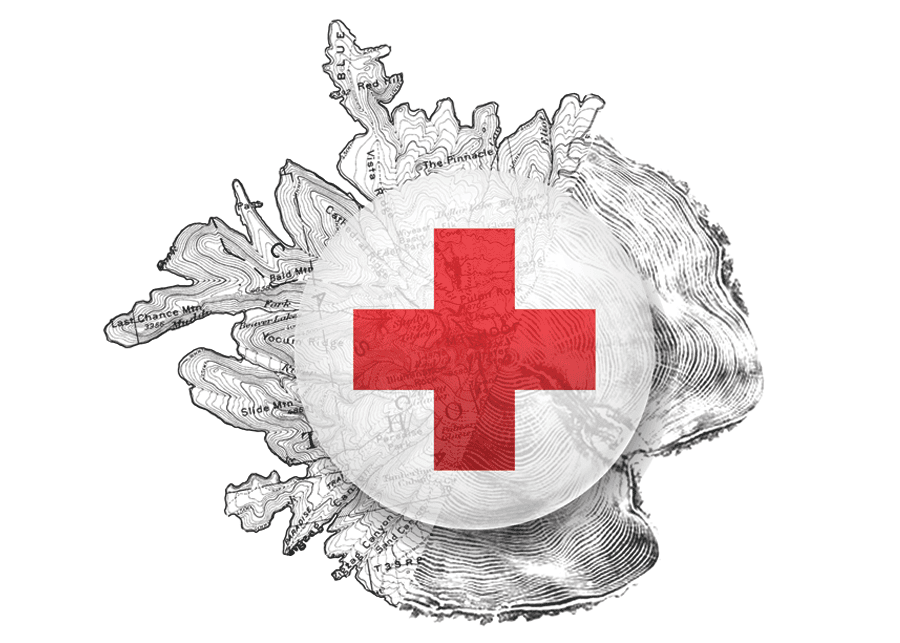 Prival-First-Aid-CPR-American-Red-Cross