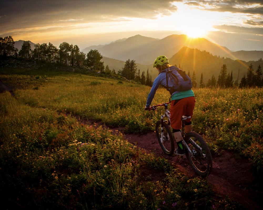 MountainBikeGuidingHomePage